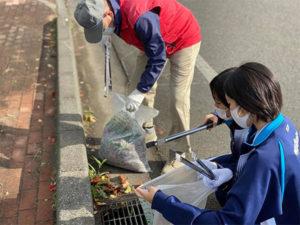 6回目の金ヶ崎緑地とその周辺の清掃や草刈り