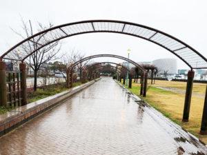 定例の金ヶ崎緑地清掃