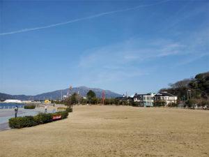 月例金ヶ崎緑地清掃
